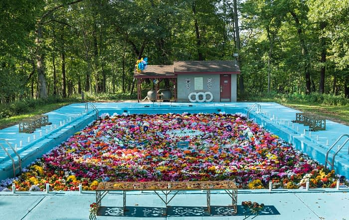 A blue swimming pool is filled with colorful flowers. Trees stand in the background and a small gray structure. There are candles and flowers in the foreground resembling an altar.
